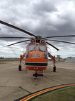 Erickson Sky Crane Elise - Photo by Tom S (2)